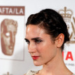 Jennifer Connelly's Braided Bun