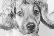 Funny And Cute Vintage Dog Pictures
