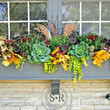 Add Fall To Your Garden